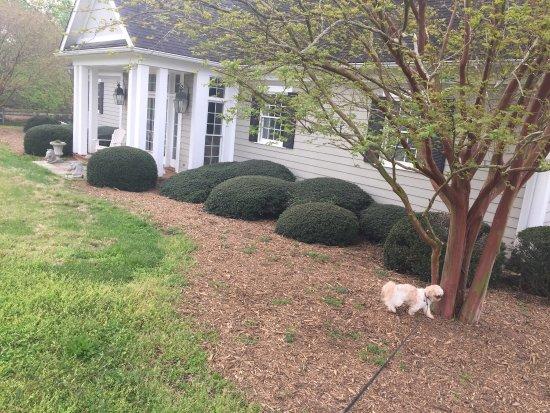 Landrum, Carolina del Sur: photo1.jpg
