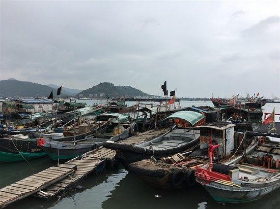 Shanwei, China: Fishing port