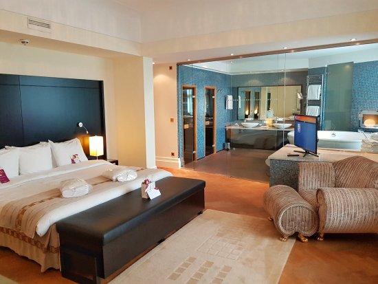 Crowne Plaza Maastricht Hotel - room photo 22413702