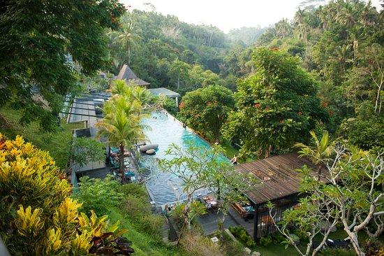 Chapung SeBali Resort and Spa: Jungle Fish infinity pool