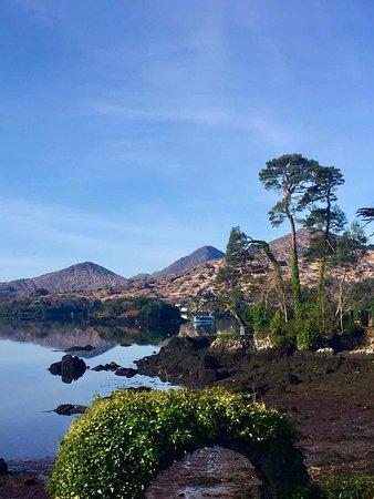 Glengarriff Bamboo Park : beautiful view
