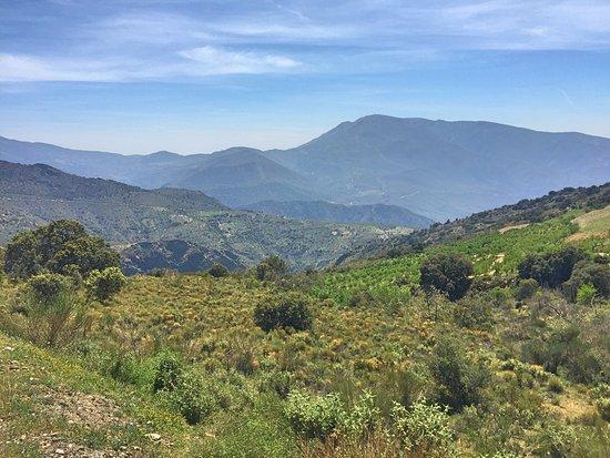 Pitres, İspanya: Ausblick während der Auffahrt nach Ferreirola. Phantastisch!
