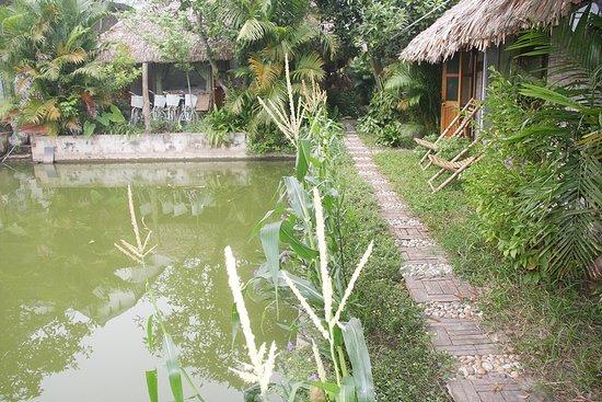 Thai Binh Garden