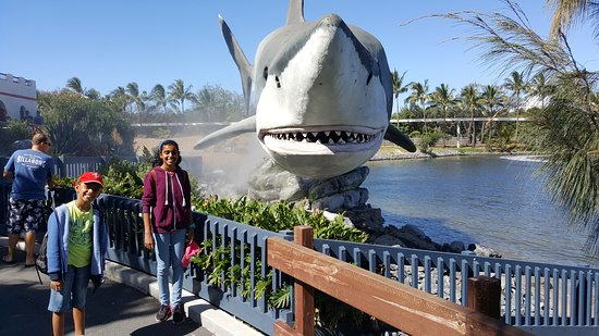 Main Beach, Australien: Sea World, Gold Coast