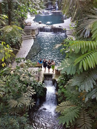 natural spring water beats chlorinated and salty waters picture