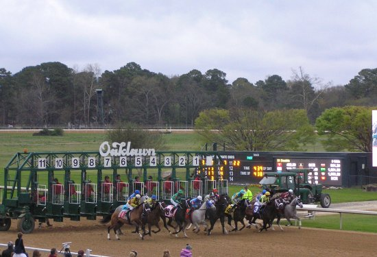 Oaklawn Racing & Gaming: And they're off!