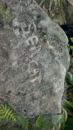 Northern Forest Reserve, Dominica: Seacat Rock!