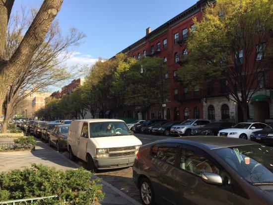 Welcome to Harlem: photo4.jpg