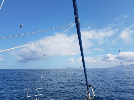 Unser Kapitän - Picture of Oby Catamaran, Corralejo - TripAdvisor