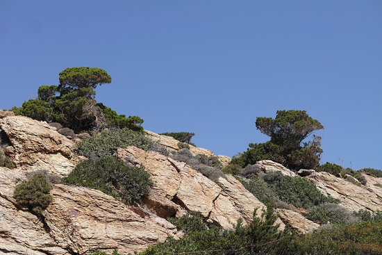 Lasithi Prefecture, Greece: Itanos. Creta, Grecia