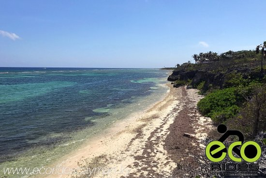 East End, Grand Cayman: Happy Easter From ECO Rides Cayman.