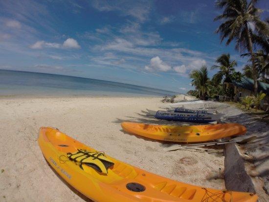 Carabao Island Foto