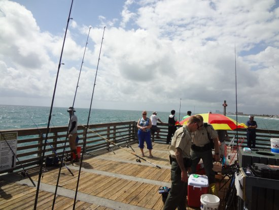 Just hanging around the pier picture of dania beach for Dania beach fishing pier