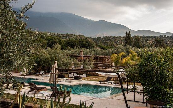 Domaine Malika: Pool area overlooking the nature