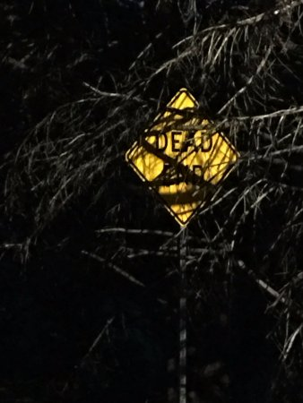 "Madison, GA: ""Dead End"" sign outside cemeteries. Creepy."