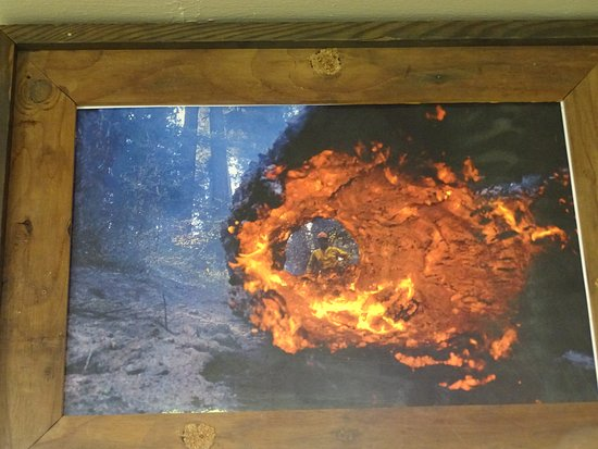 Siskiyou Smokejumper Base Museum: Impressionen