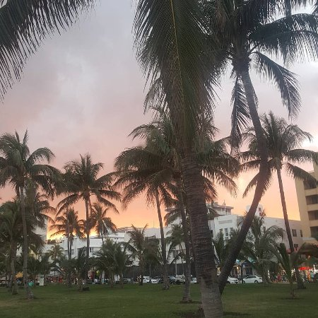 South Miami, FL: Ocean Drive during sunset.