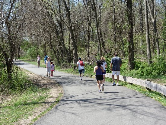 Ellicott City, MD: Joggers and Walkers