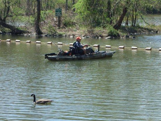 Ellicott City, MD: BYOB - Bring Your Own Boat!