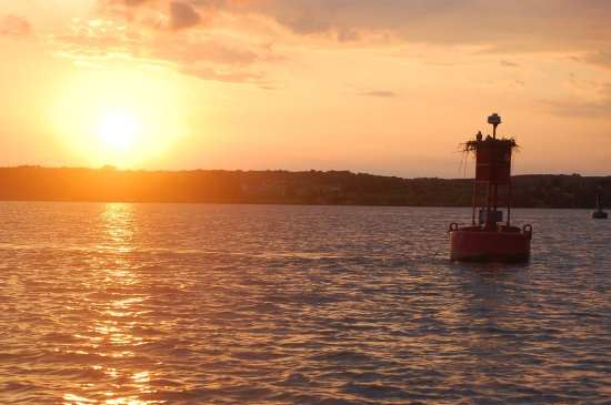 Chesapeake City, MD: Sunset cruises at Town Point, MD. Book your sunset cruise today and experience the Chesapeake Ba