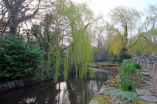 The Bridge Inn - Michaelchurch Escley: riverside seating