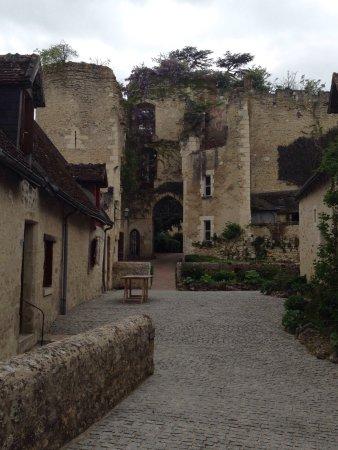 Chedigny, Prancis: photo2.jpg