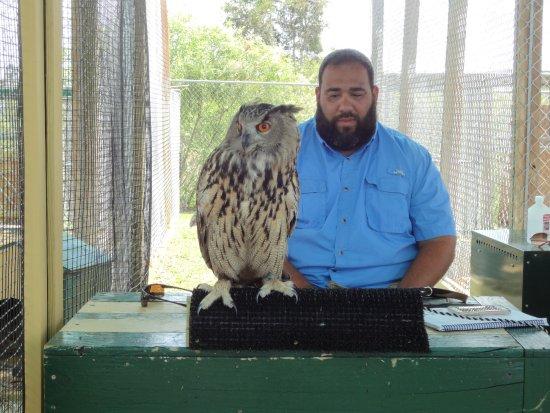 Weston, Flórida: One of the cool animals at Sawgrass