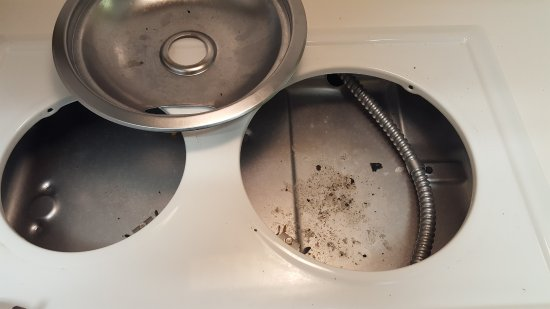 Maitland, FL: This is under the stove top. Who can say when this was last removed and cleaned. Bugs were here.