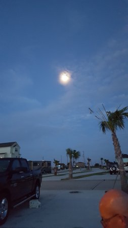 Galveston Island Photo