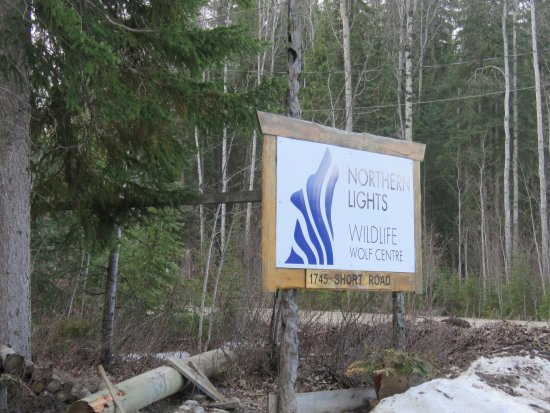 Golden, Canada: Lots of signs guiding you in