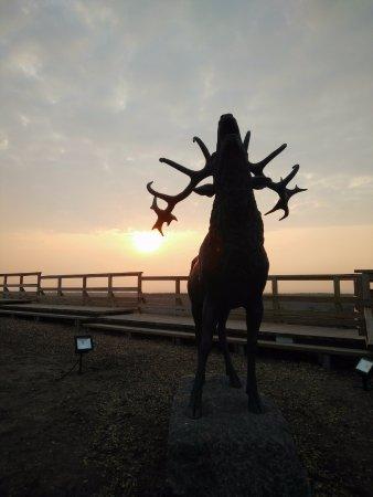 Ventspils, Latvia: Elk?