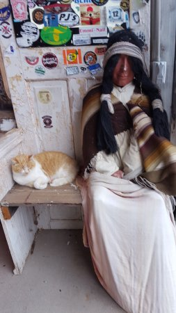 คิงแมน, อาริโซน่า: A dead indian and a very much alive cat