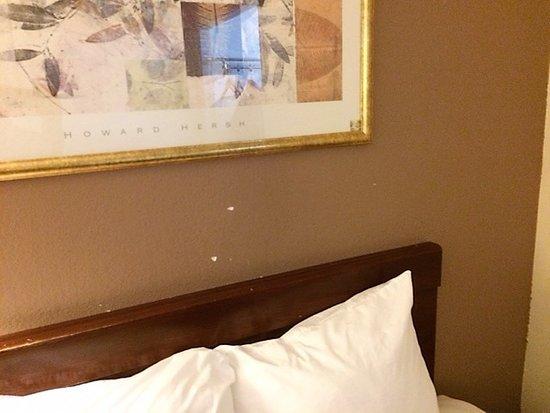 Peinture éraflée. Il est temps de repeindre moderne, Motel 6!