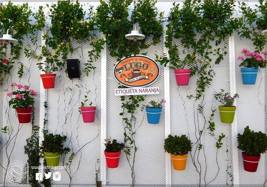 Sayula, Mexico: Nuestra jardinera