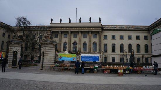 Humboldt University (Humboldt Universitat): Университет