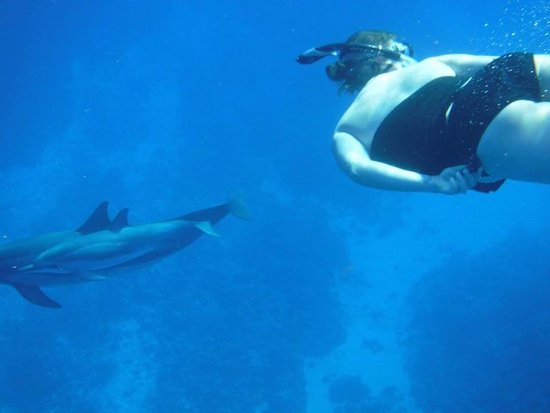 Kealakekua, Hawái: My mom took this photo of me on our dolphin adventure with My Kona Adventures