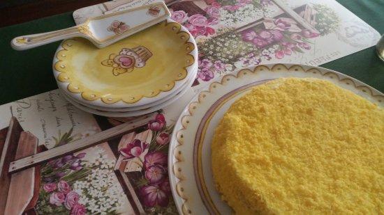 Province of Monza and Brianza, Italy: Mimosa, deliziosa!