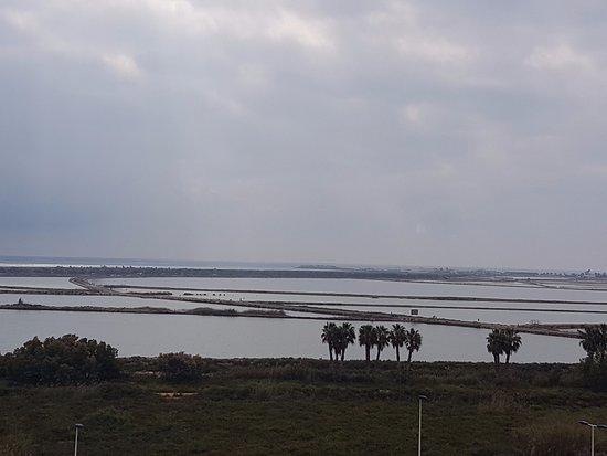 Thalasia Costa de Murcia: Vista desde la terraza