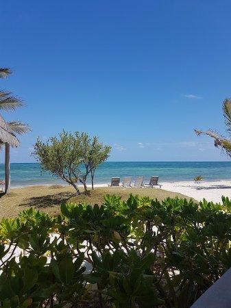 Mayan Beach Garden: Room view