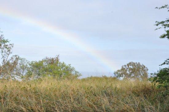 Hawi, HI: rainbows!