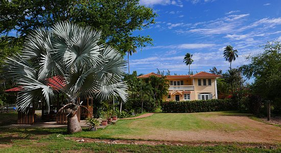 Tropical Trail Rides - Isabela: The property is beautiful