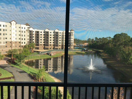 The Grove Resort And Spa Orlando Reviews