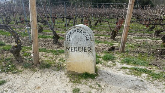 Epernay Picture