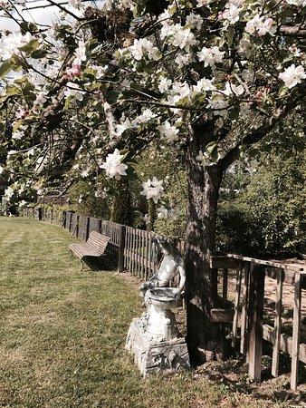 Bishop's Rest B&B: photo4.jpg