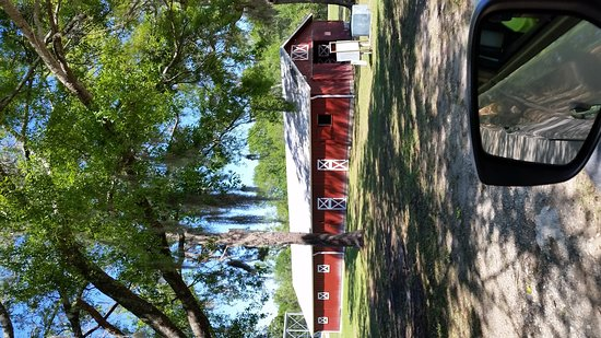 Hinesville, GA: The red barn is a bathroom, has a stage, unfinished dog park