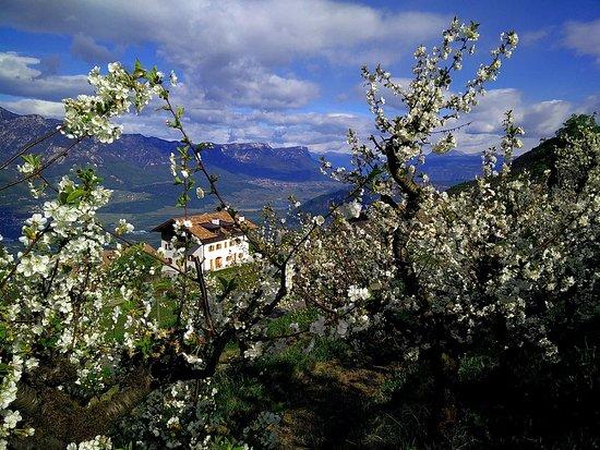 Montagna, Italia: Blick zum Nachbarhof