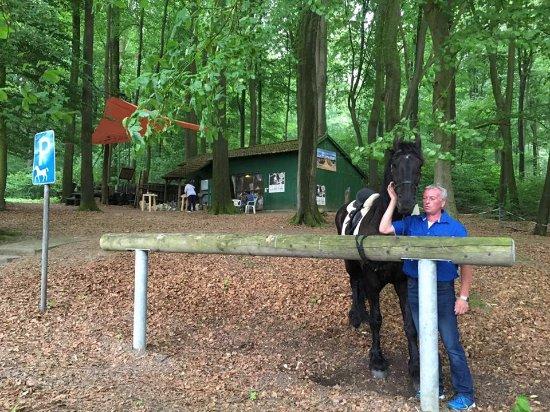 เฮวิกซ์เบค, เยอรมนี: Anleinpfosten für die Pferde und im Hintergrund das ARTelier für Bildhauerei
