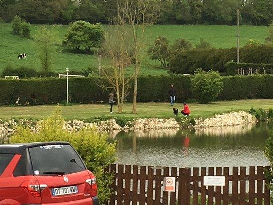 Roussent, France: Petit étang sécurisé avec les mobil home tout autour