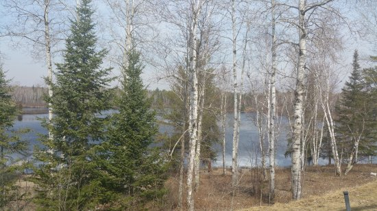 Northern Lights Lodge: View from front yard area
