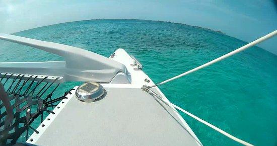 Seahorse Sail and Snorkel Adventure: Sailing